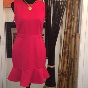 Anne Taylor Loft Sleeveless Dress